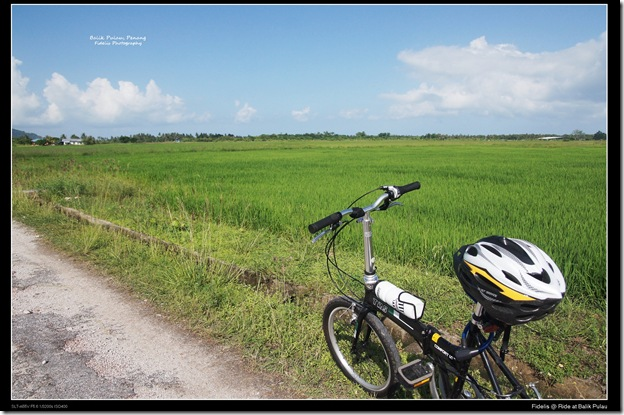 Ride Balike Pulau6