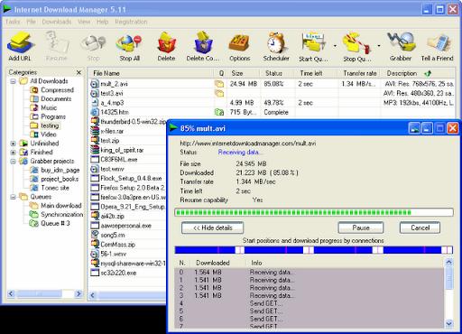 ���� ������ ����� Internet Download Maneger 6.08 ������ �������