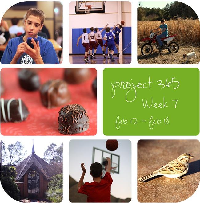 4week7