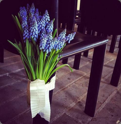 pew end253237_10152845747125510_978426367_n planet flowers