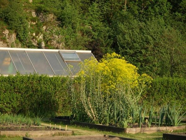2012-05-25 Hagen på Møll (14)