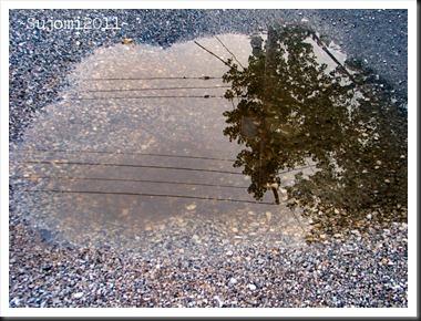 2011 08 12 IMG_0383w