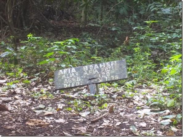 Boabeng Fiema Monkey Graveyard