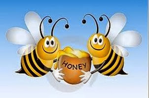 Amazing Pictures of Animals, Photo, Nature, Incredibel, Funny, Zoo, Bee, Insetcs, Anthophila, Alex (5)