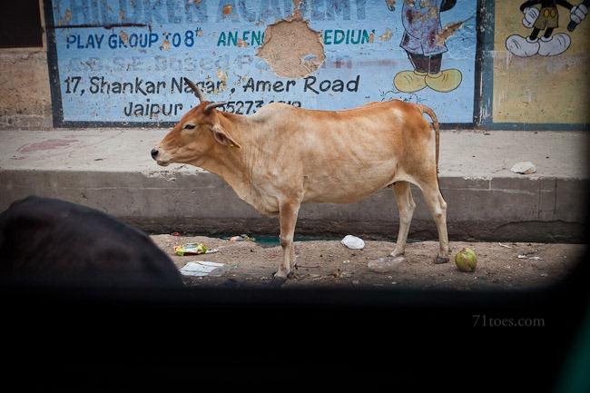 2012-07-27 India 57499