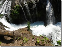 lewis river falls 71