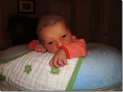 2.  Sweet Knox doing tummy time