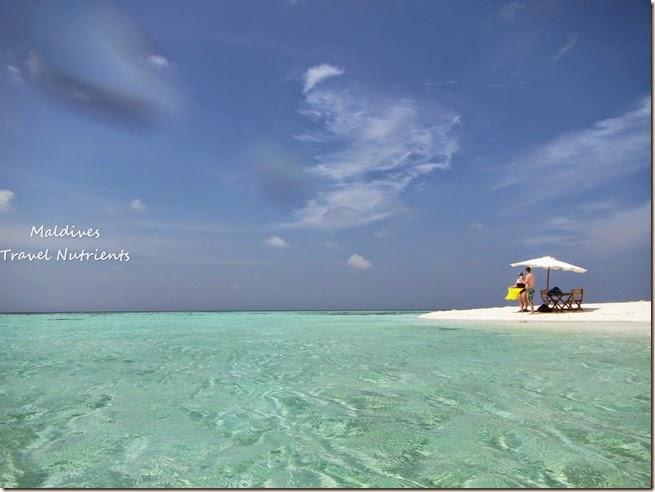 馬爾地夫 野餐島 浮潛 (66)
