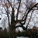 2012_12_16_Zimowego_krecenia_cd_29.JPG