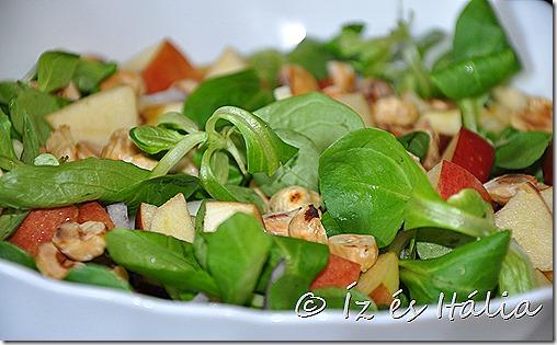 Saláták, madársaláta