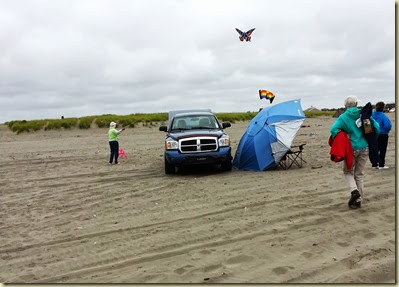 Kite flying on Long Beach