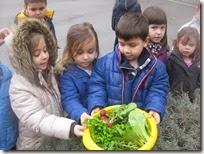 επίσκεψη στο λαχανόκηπό μας (3)
