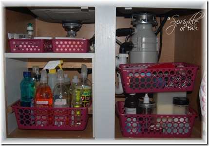 Kitchen Sink Organization Fail {A Sprinkle of This . . . . A Dash of That}