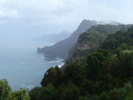 Tarmul stancos al Madeirei
