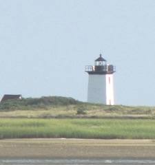 Provincetown Lighthouse taken across the marsh4