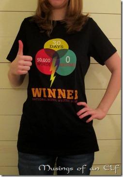 NaNo Winner's Shirt
