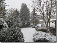 snow day 02