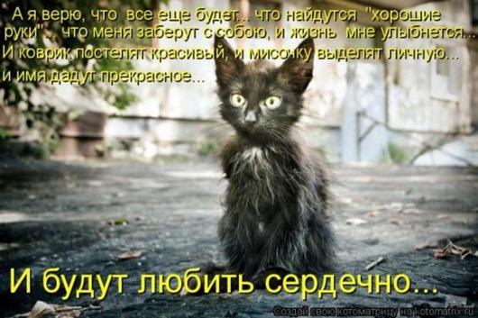 fdfb5402383d201189b0735a783_prev