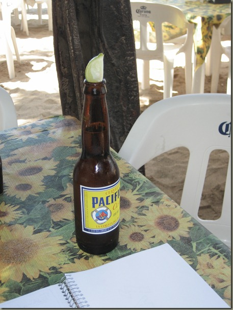 Pacifico and Sketchbook