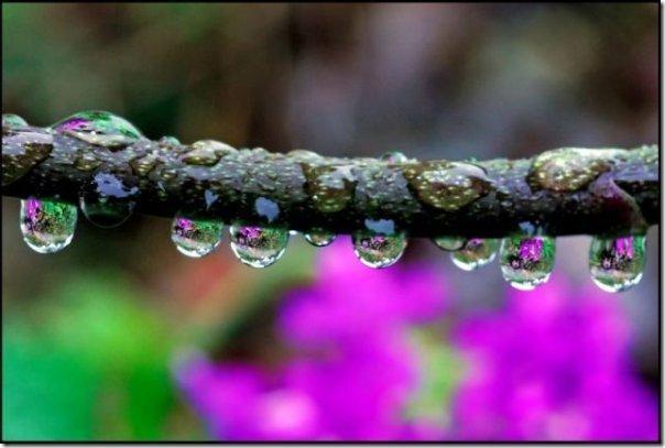 gota de agua (6)