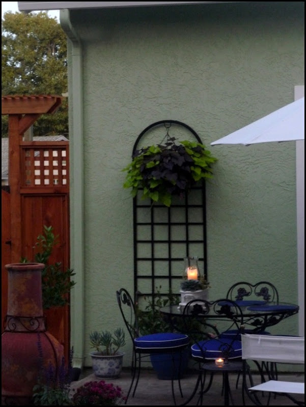 Backyard 023 (600x800)