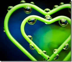 puzzled hearts_flickr
