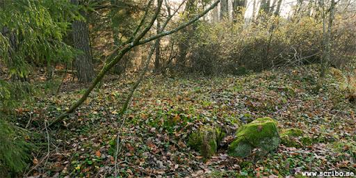 Lämningar efter Bergsbrunna kvarn