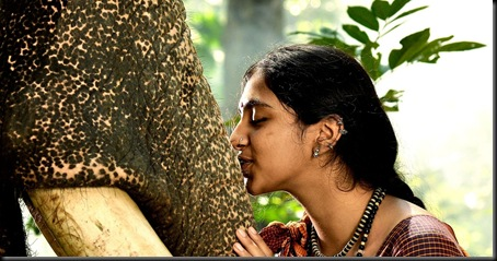 Kumki_Movie_Stills294c41e69aaa785e49873d68afe80638