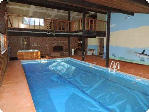 pool shark2