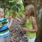 Nanu, was ist das denn für eine riesige Frucht? © Foto: Svenja Penzel | Outback Africa Erlebnisreisen