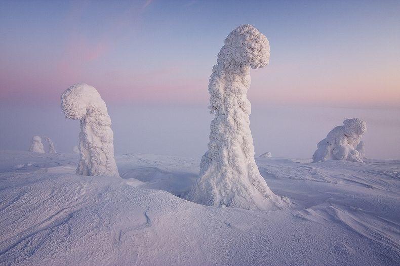 Sentinels-of-the-Arctic-2