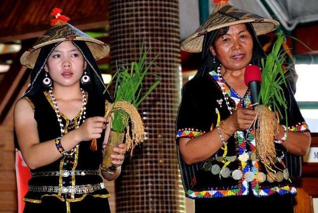 Festival del Kaamatan danze tradizionali