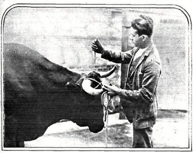 1930-05-13 (Estampa) Apuntillando a cachete