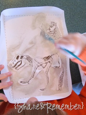 Learning About Dinosaurs Skeleton