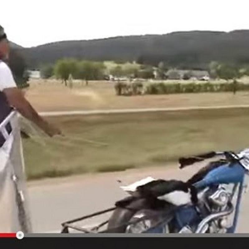 Έφτιαξε ένα άρμα χρησιμοποιώντας μια μοτοσικλέτα