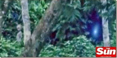 extraterrestre en el amazonas