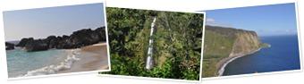 View Hawaii