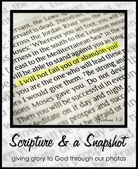 scripture snapshot