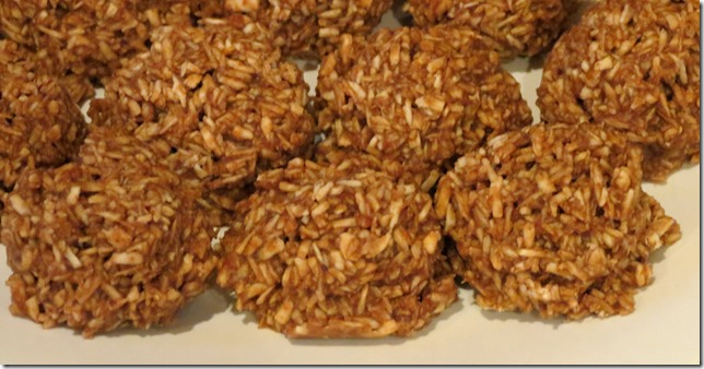 Grain Free No Bake Coconut Cookies