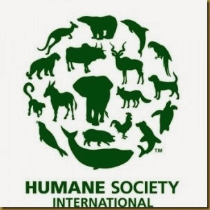 Humane-Society-International-HSI1