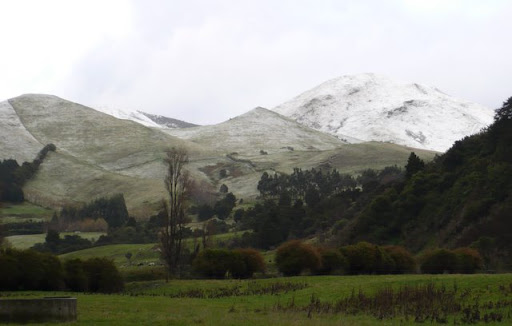 Tararua Foothills from Upper Plain Road