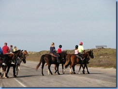 6026 Texas, South Padre Island - horseback riders crossing Padre Blvd