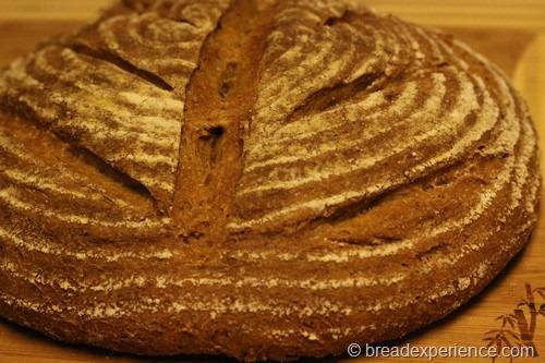 einkorn-bread-sponge020