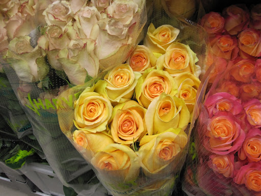 Here is the rarest rose in the shop (the yellow roses in the center). Brought from Ecuador, this is a rare mutation of a Judy rose. Natan said the color and the way the flower opens are the rare characteristics of this specific rose.