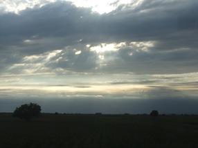 entre Novi Sad y Belgrado