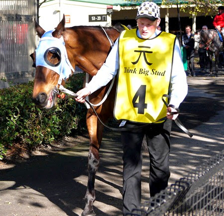 race 7 _the cleaner 1