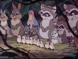 02 les animaux de la forêt