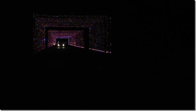 Prairie Lights 178
