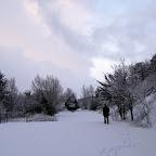 2012-02-01 (3).jpg