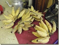 Home grown Sugar bananas.